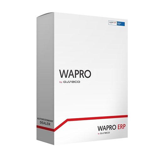 Wapro ERP – profesjonalne oprogramowanie biznesowe w przystępnych cenach